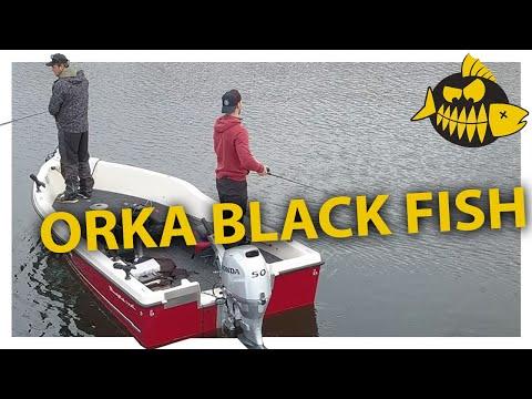 Roofmeister botentest op het Brielse Meer – De Orka Black Fish
