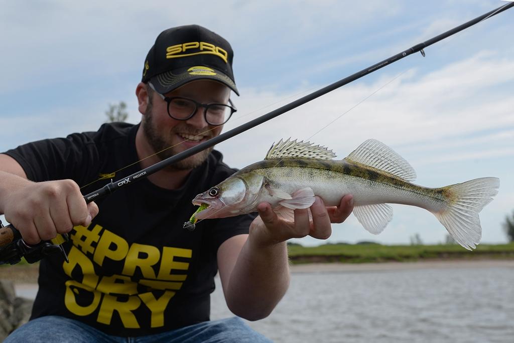 How To – Vissen op snoekbaars vanaf de kant
