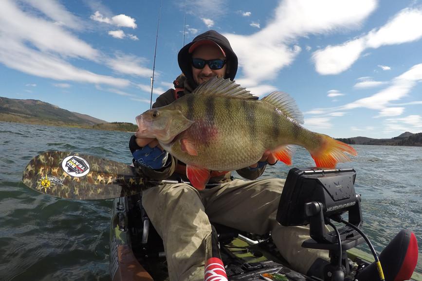 Finesse vissen met HART