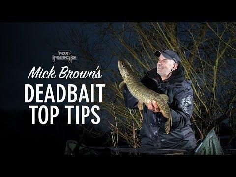 Dood aas vissen op snoek – Tips van diehard crack