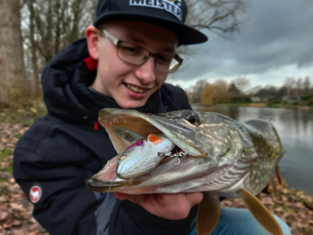 Tackle Meister Review – 4D Pulse Tail Trout - Smaakmaker in de polder - Roofmeister
