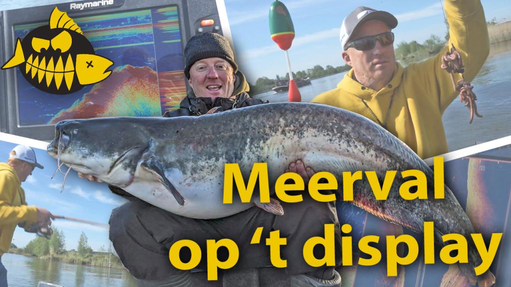 ***Roofmeister VIDEO*** Vissen op meerval met Hendrik-Jan Verheij – Fishfinder cruciaal