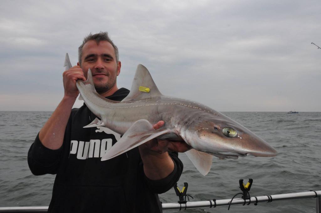 Nieuwe vismagneet in de Cinnetic stal – Martijn Dekkers
