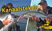 ***Roofmeister VIDEO*** Jouke Jansma vangt ziek grote baars – Zo vis je verticaal op kanaal stekels><span class=
