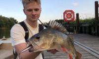 De ondieptes op de rivier bevissen met twitchbaits – Robert Mastbergen><span class=