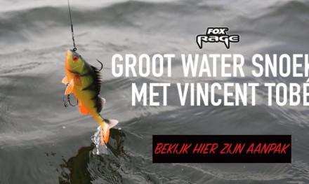 Tips voor snoek op groot water – Vincent Tobé