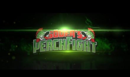 Perch Fight