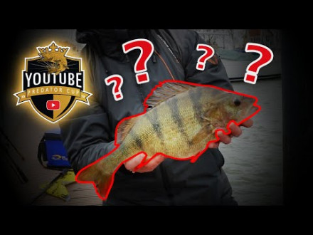 Schandaal bij de YouTube Predator Cup