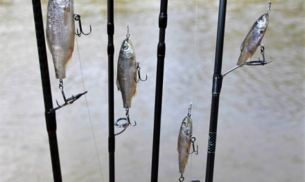 Hengelsport- en Botenbeurs 2019 dé beurs voor de roofvisser