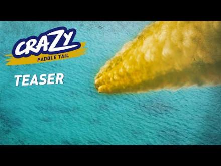 Nieuw kunstaas van Fiiish – Crazy Paddle Tail