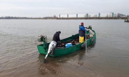 Harde standpunten van Sportvisserij Nederland jegens de beroepsvisserij