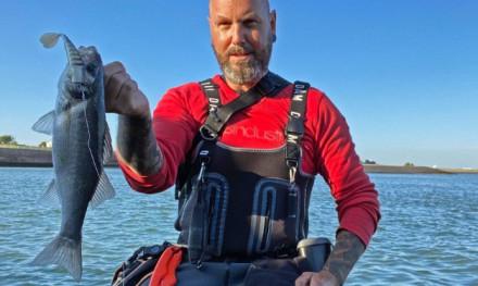 Zeebaars in zeeland  – Interview met een junky