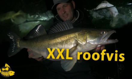 ***Roofmeister VIDEO*** Is dit een snoek van 130 cm? Grote roofvis met The Eagle