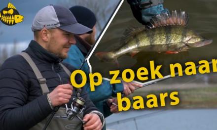 Alles uit de kast voor grote baars met Ultimate Fishing – Twitchbaits & Carolina rig