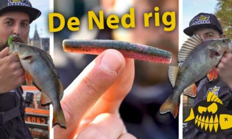***Roofmeister VIDEO*** Met de Ned rig in Amsterdam – Streetfishing met Rico Stougie