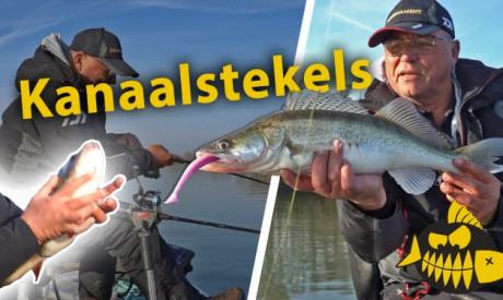 ***Roofmeister VIDEO*** Jouke Jansma vangt ziek grote baars – Zo vis je verticaal op kanaal stekels