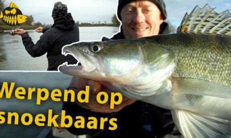 ***Roofmeister VIDEO*** Anders werpen op snoekbaars – Met een expert op de rivier